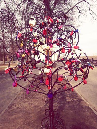 Love-tree in Ryazan Kremlin Starting A Trip Open Edits Tree