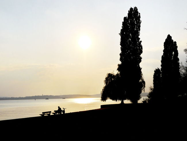 Meersburg Bodensee Lake Constance Lake Constance Meersburg Beauty In Nature Bodensee Bodenseeregion Day Nature Outdoors Real People Scenics Sea Silhouette Sky Sun Sunlight Sunset Tranquil Scene Tranquility Tree Water