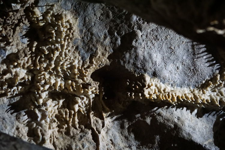 Stalactite  Beauty In Nature Cave Close-up Day Full Frame Geological Geological Formation Geology Indoors  Indoors  Nature No People Pattern Rock - Object Stalacmite Stalagnate Textured