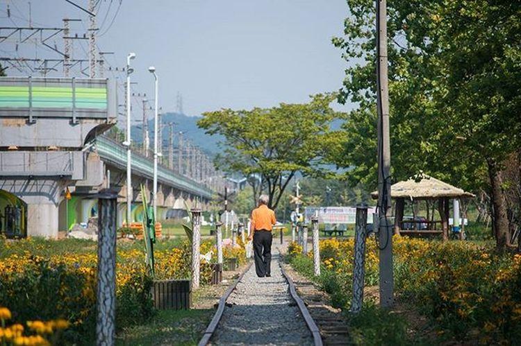 풍경 일상 사진 여행 추억 회상 Photographer_suhyeon Travel Nikond610 니콘D610 현지하철 옛철길 공존