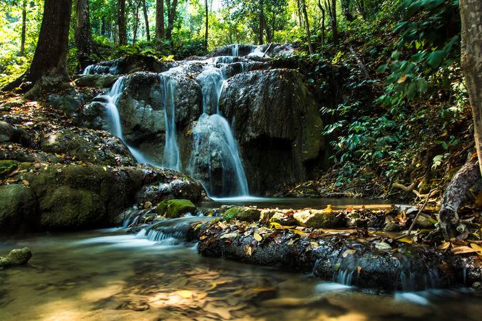 Chiang Rai, Thailand Nature Nature Photography Chiangrai Forest Forest Photography Nature_collection Pu Kang Waterfall Water Waterfall