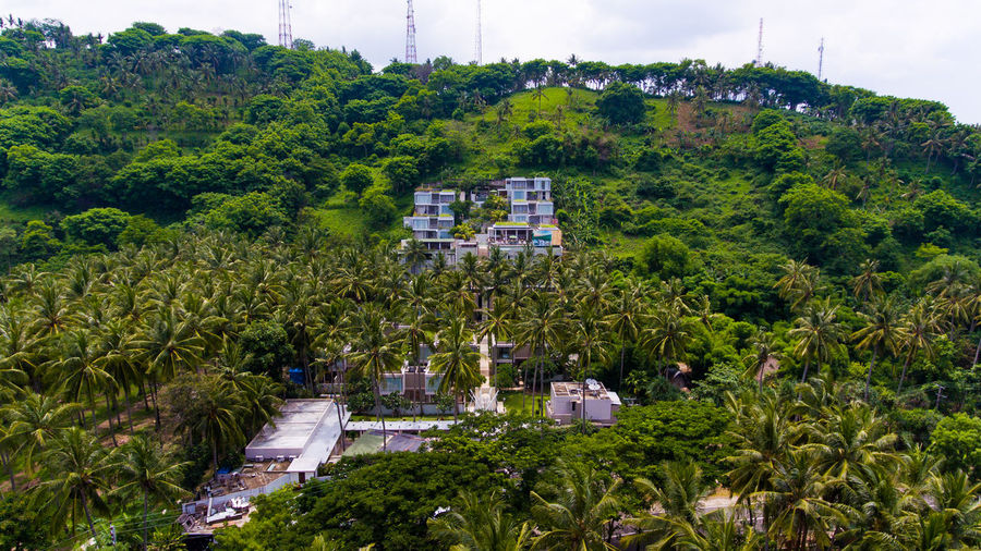 hotel in mountain forests Plant Tree Growth Architecture Green Color Built Structure Day Nature Building Exterior Beauty In Nature No People High Angle View Foliage Lush Foliage Building Scenics - Nature Outdoors City Transportation Sky Lombok Lombok-Indonesia Hotel Hotel View Resort
