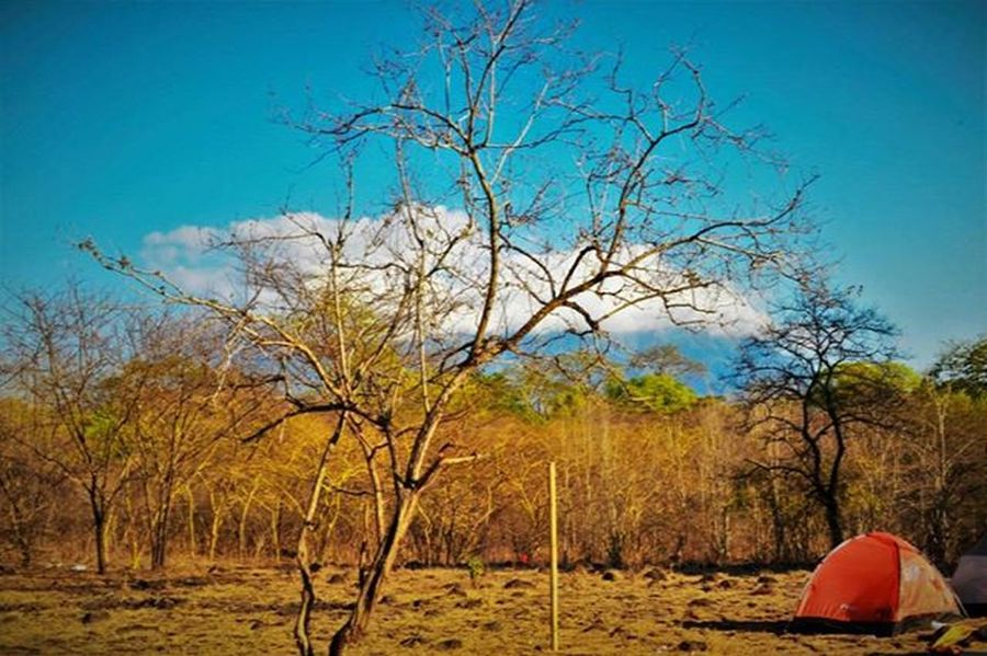 Belakang basecamp Tamannasionalbaluran Baluran Baluran Landscape Africavanjava Fotografi Penikmatkaryatuhan