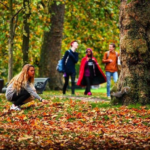 Autumn Leaves TheGirl Hashtagsgen Fall Falltime Season  Seasons Instafall Instagood Instaautumn Photooftheday Leaf Foliage Colorful Orange Red Autumnweather Fallweather Nature Benchinthepark Hydepark London Therosegarden Forest love canonphotography publicphotography