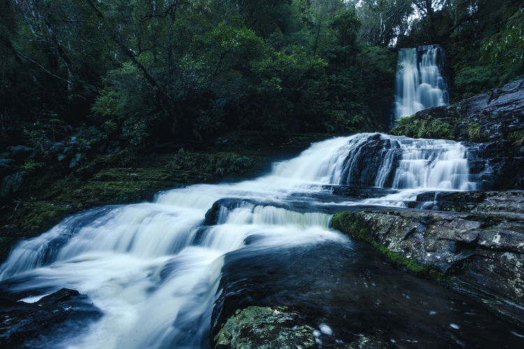 Beauty In Nature Blurred Motion Catlins Environment Falling Water Flowing Flowing Water Forest Land Long Exposure Motion Nature No People Outdoors Plant Power In Nature Rainforest Rock Rock - Object Scenics - Nature Solid Tree Water Waterfall