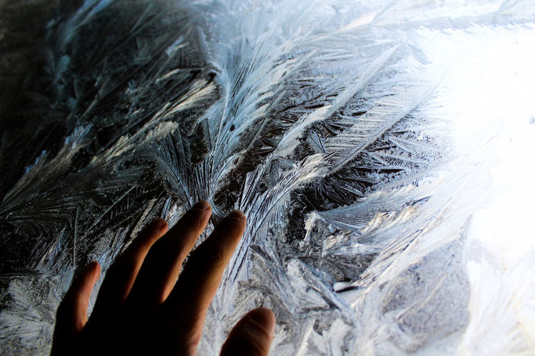 Close-up of hand against frozen ice