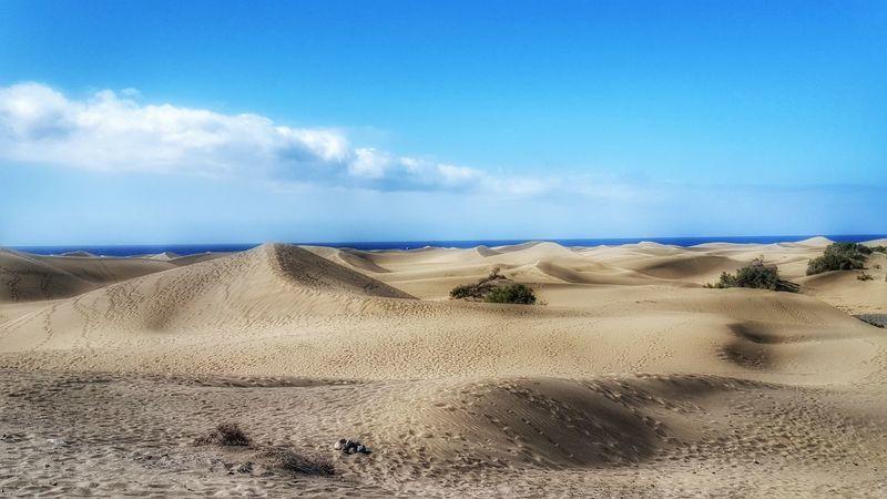 The dunas of Maspalomas Dunas De Maspalomas Dunas Maspalomas Maspalomas Playa Del Ingles Gran Canaria Gran Canaria - Maspalomas Isla Canaria Kanarieöarna SPAIN
