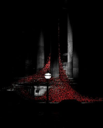 Lest We Forget Rememberance Remembranceday Remembrancepoppy Liverpool Poppies  Poppy GBNF