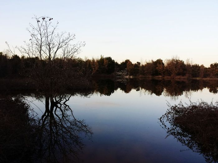 Reflexion & paysage