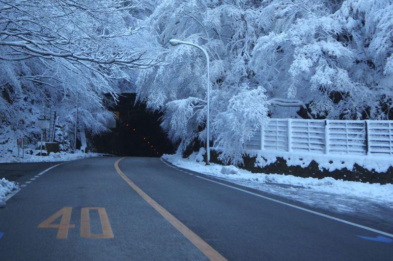 国道414号線 山の風景
