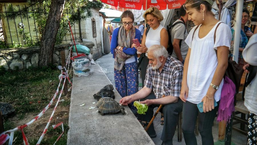 Turtle 🐢 Taking Photos Hanging Out Fresh Enjoying Life Taking Photos Getting Inspired Turkey Check This Out Turkishfollowers Kastamonu Merkez Street Photography Eye4photography  Turkeyphotos Love ♥ First Eyeem Photo Eyemphotography EyeEmBestPics EyeEmBestEdits EyeEm Best Shots EyeEm Masterclass Old Man Streetphotography Streetphoto Streetphotographer