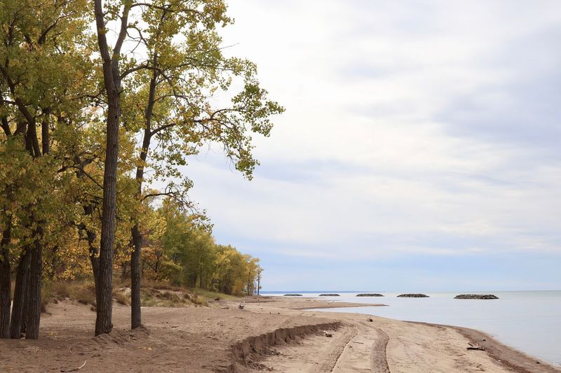 Erie Sky Water Beach Land Sea Cloud - Sky Beauty In Nature Nautical Vessel Tranquil Scene Tree Sand Tranquility No People Horizon Over Water Outdoors Plant Scenics - Nature Day Nature