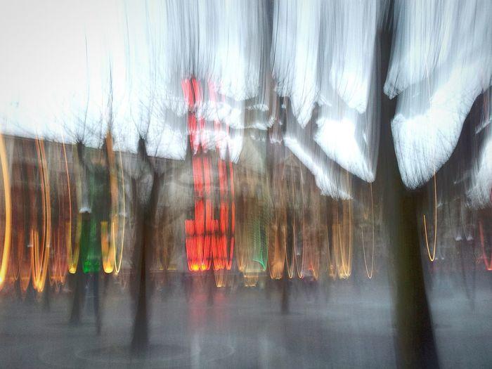 Frankfurt Rainy Afternoon Winter Paulsplatz Art Platanen