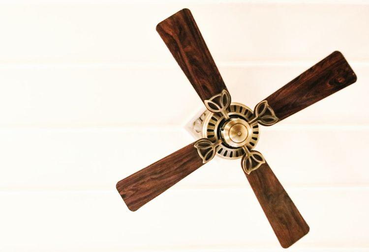 Fan Ceiling