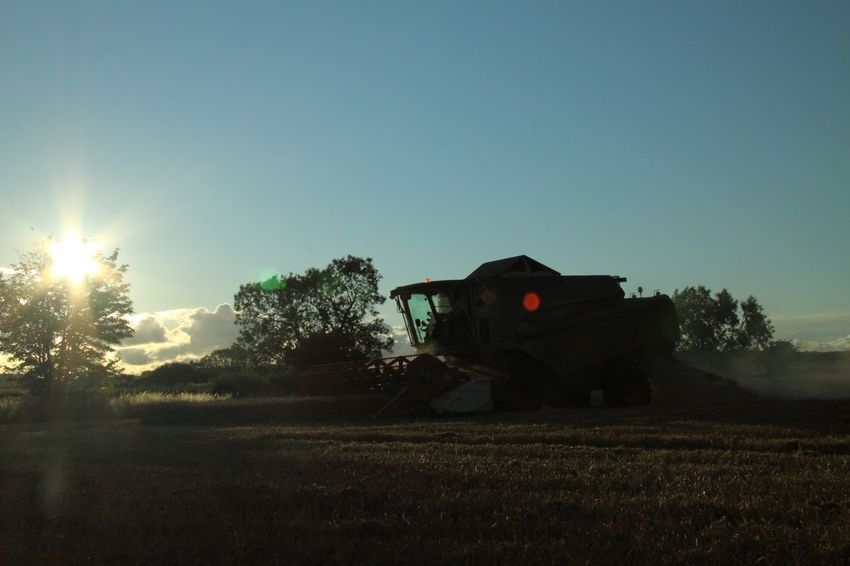 End of the Day at Harvest Time Agricultural Machinery Claas Combine Harvester Farm Landscape Farming Field Harvest Time Landscape Outdoors Rural Scene Summertime Sunset The Cotswolds