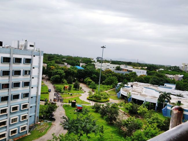 up high Green Color Greenhorizon Cloud - Sky Trees And Nature Tree High Angle View Architecture Sky Building Exterior Built Structure