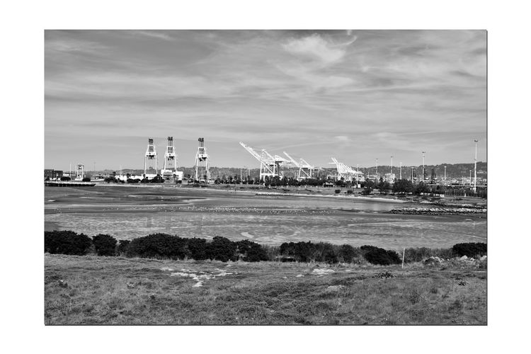 Middle Harbor 2 Port Of Oakland,Ca. Middle Harbor Estuary Cove Lowtide  Mudflats Waterfowl Port Cranes Machinery Shipping Containers Maritime Dockyard Pier Reflections On The Mudflats Monochrome_Photography Monochrome Black & White Black & White Photography Black And White Black And White Photography Landscape_Collection