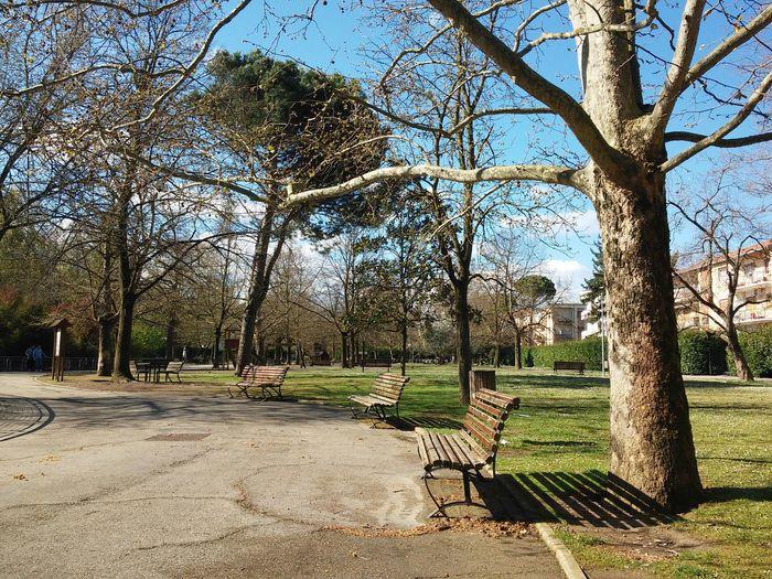 Parco Parco Parcodellaresistenza Verde Parco Forlì