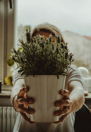 Woman holding potted plant against window
