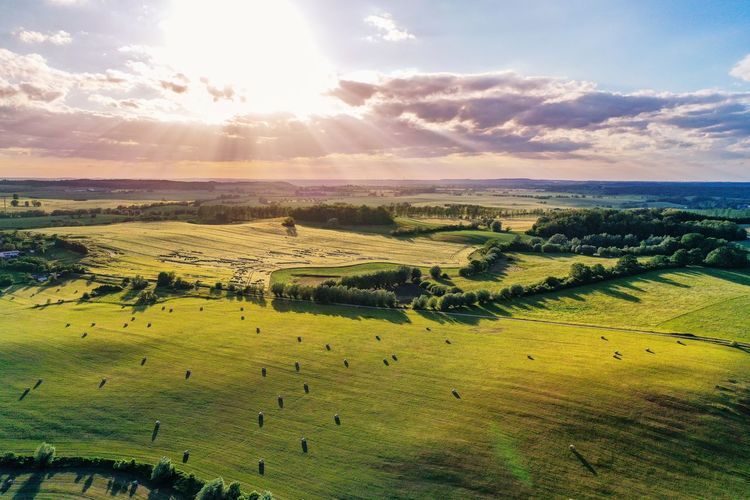 Aerial view of agricultural fields near Teterow Evening Sky Nature Aerial Image Aerial View Forest Green Summer Sunset Rural Scene Agriculture Sunlight Sun Field Sky Landscape Green Color Blooming Cultivated Land Agricultural Field Plantation Shining Sunbeam Farmland Growing Crop
