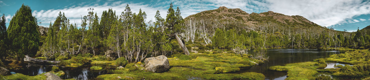 Pool of Bethesda, Walls of Jerusalem National Park, Tasmania. Australia Discover Places Growth Hiking Panorama Tranquility Travel Cushion Plants Destination Forest Highlands Hiking Adventures Idyllic Lake Landscape Mountain Mountain Lake Nature Heaven Pine Trees Pool Of Bethesda Rock - Object Stillstanding Water Tasmania Tasmanian Landscape Walls Of Jerusalem National Park