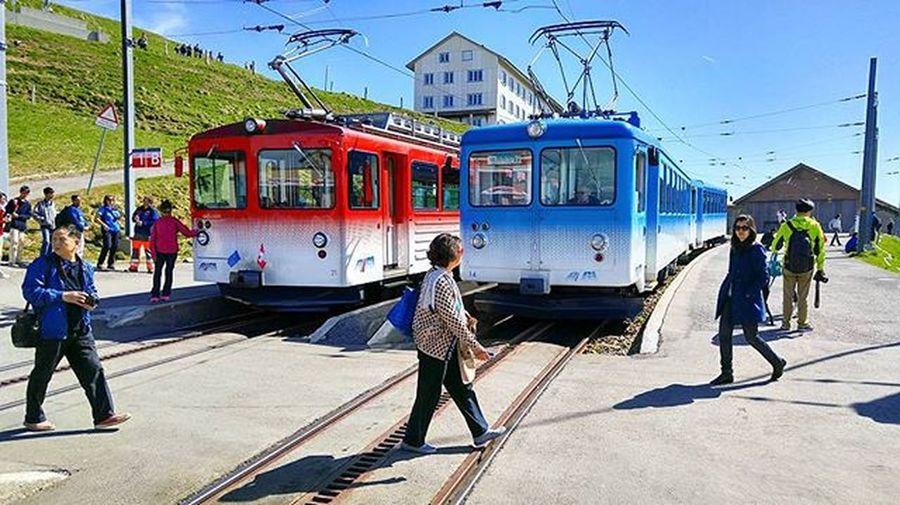 리기산 정상 리기쿨름에 정차하고 있는 열차들 빨강 파랑 보기만해도 기분 좋아지는 색깔들이다. 많은 사람들이 이 열차에 오르며 즐거운 기대를 가지고 이 곳에 올랐을지... :) Lucerne Luzern Rigi Rigikulm Switzerland Swiss Hiking Tour 루체른 리기쿨룸 리기산 스위스 여행 하이킹