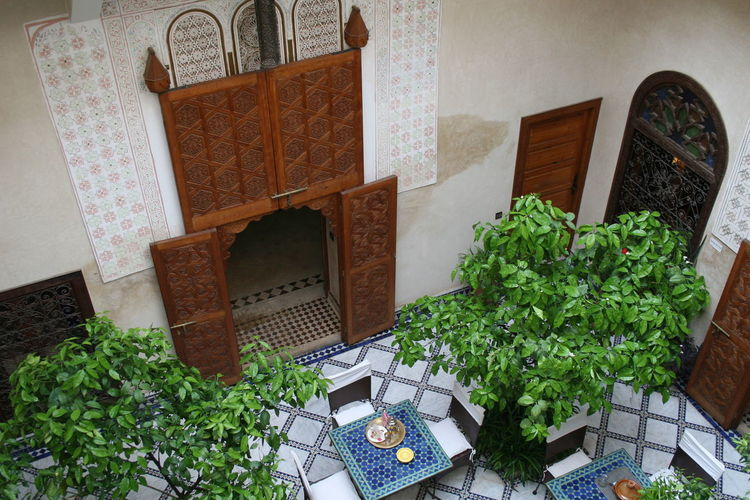 Architecture Courtyard House Green Color High Angle View Leaf Morocco Ornate Design Riad