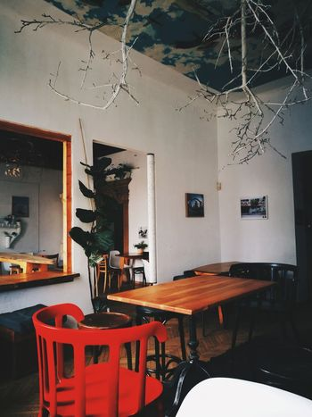 Interesting Places Interesting Mornings Artistic Food And Drink Chair Table Architecture Chill Time..  Cluj-Napoca Coffee - Drink No People Indoors  Good Conversation Time Off Potted Plant Friends Day