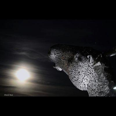 "Moonlit Kelpie, at The Kelpies. ISO 100 f5. 8""sec Insta_Scotland Insta_sky_reflection Ig_shutterbugs Igbest_shotz Igsuper_shots Igmastershots Loves_Scotland Igbest_shots BonnieScotland Bnwscotland Master_shots Sky_sultans Moonlight Nightphotograghy Nightscene Igerscots Britains_talent Jaw_dropping_shots Global_hotshotz TheKelpies"