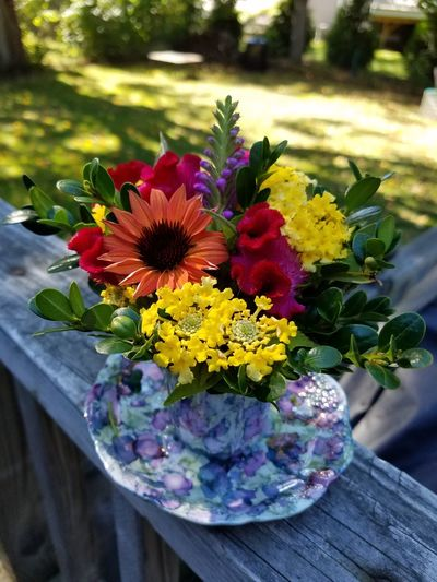 Flower Day Multi Colored Freshness Outdoors Variation Nature Fragility No People Close-up Flower Head Petal Beauty In Nature EyeEmNewHere Autumn Mood Vibrant ColorNature Hampton, NH Eyeemnewhere! Flower Arrangement Flowers_collection Flowers 🌸🌸🌸 Bright Colorful Flowers Freshness