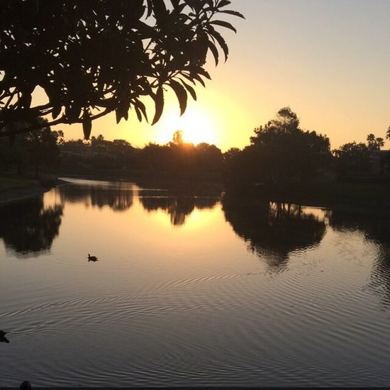 Morning jog from the other day First Eyeem Photo Water Sunrise Morningjog Water Reflections Sun_collection Taking Photos Taking pictures