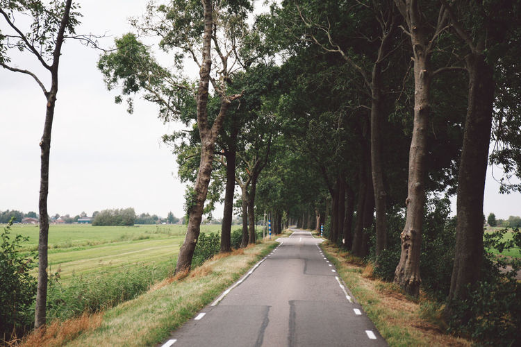 Autumn Beauty In Nature Cloudy Day Destination Grass Growth Horizontal Landscape Lush - Description Motorbike Motorcycle Nature Netherlands No People Outdoors Road Scenics Sky The Way Forward Tranquility Tree Trip