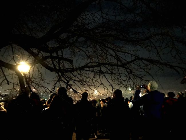 Silhouette Large Group Of People Night Illuminated Tree Outdoors Celebration Bare Tree Men Togetherness Women Sky People Nature Crowd Adult Adults Only