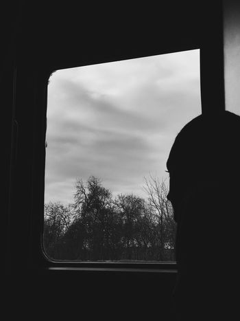 Patience Patience Train Window Sky Silhouette Real People One Person Glass - Material Tree Rain Portrait Day Lifestyles Transparent Indoors