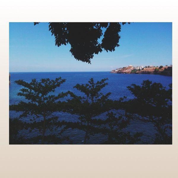 Overlooking I Hate School Beach Resort View Summer's Ending