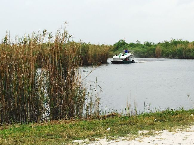 Airboat Everglades National Park Loxahatchee