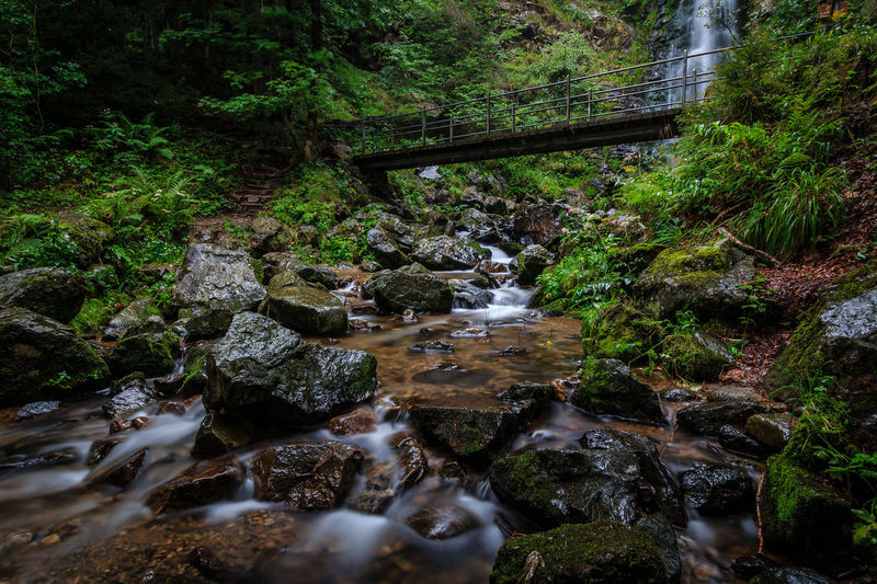 Todtnauer Wasserfälle Beauty In Nature Blurred Motion Bridge - Man Made Structure Connection Day Flowing Water Forest Landscape Long Exposure Moss Motion Nature No People Outdoors Rock - Object Scenics Stream Tranquil Scene Tranquility Travel Destinations Tree Water Waterfall