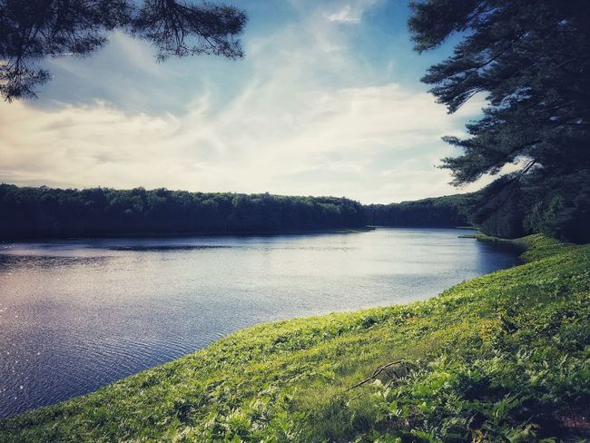 Hiking along the shores of a Reservoir Plant Water Sky Nature Cloud - Sky Tranquility Beauty In Nature Tree Day Lake No People Tranquil Scene Scenics - Nature Growth Land Outdoors Green Color Grass
