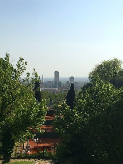 Brescia, I'm in love Sky Plant Architecture Built Structure Building Exterior Nature Tree