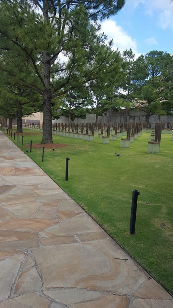 The empty chairs signify each person lost in the Oklahoma City bombing. Smaller chairs are for the children. Murrah Building Memorial Oklahoma City Oklahoma Oklahoma City Oklahoma History Nature Innocence Lost