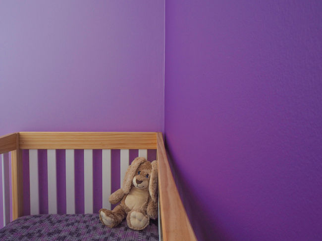 Baby Cribs Nursery Room Room Decor Stuffed Stuffed Toy Animal Bed Bedroom Bunny  Crib Indoors  Mammal No People Purple Rabbit Stuffed Animal Stuffed Toy Teddy Bear Toy Ultraviolet Vibrant Vibrant Color Violet First Eyeem Photo EyeEmNewHere