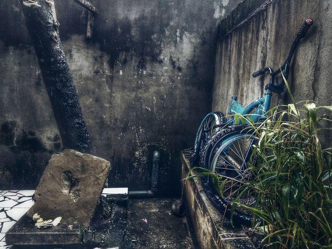 Indoors  Old Bike