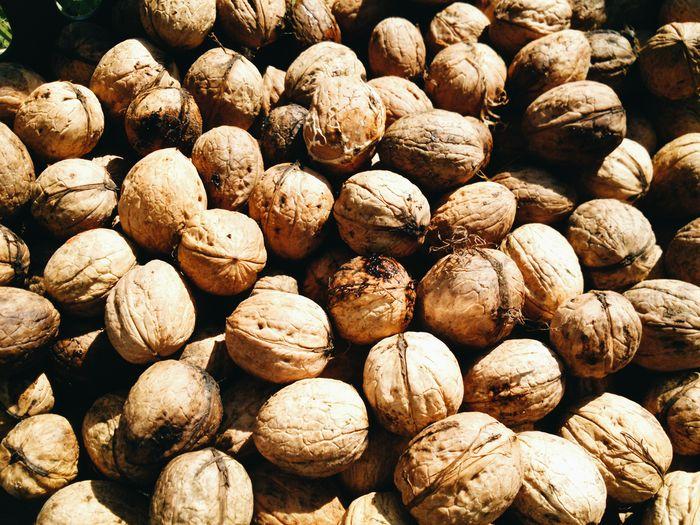 We harvested walnuts this weekend Walnuts Harvest