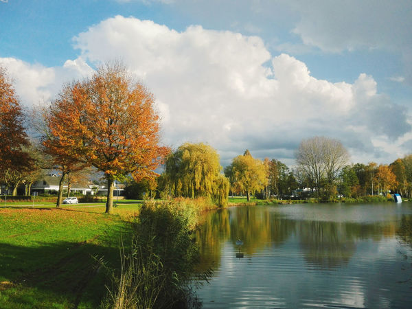 Lakeside town views on a sunny day in Autumn. Autumn Autumn Colors Beautiful Beautiful Nature Cloud Fall Colors Sky And Clouds The Netherlands Beauty In Nature Cloud - Sky Cloud And Sky Day Dutch Fall Grass Holland Lake Landscape Nature Outdoors Scenics Sky Tree Water