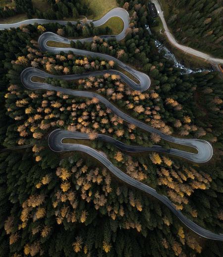 Aerial view of winding road and trees at forest during autumn