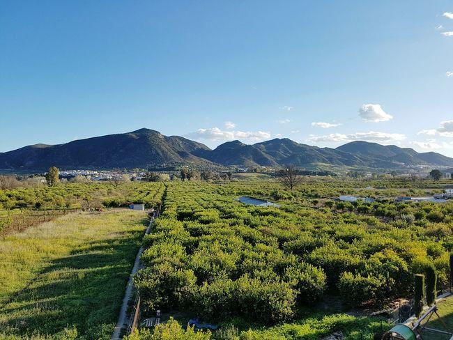 Cártama Sierra Naturaleza 🌿 Sol