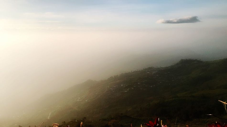 Sky Scenics - Nature Beauty In Nature Cloud - Sky Tranquility Tranquil Scene Fog Outdoors Day Tree Mountain Range No People Idyllic Mountain Environment Nature Landscape High Angle View Non-urban Scene