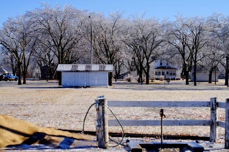 """Visual Journal January 17, 2017 Western, Nebraska - 15 and 16 January 2017 Ice Storm - Over the course of 15 and 16 January 2017, an upper-level storm system tracked from northwest Mexico into the central Plains. A seasonably moist low-level air mass present ahead of the upper-air disturbance surged north through the Great Plains, atop a sub-freezing, near-surface layer of air. The net result was a widespread ice storm which affected locations from the southern High Plains into the mid Missouri River Valley. This winter storm was unusual from the perspective that the predominant precipitation type was freezing rain with little in the way of observed snowfall. Over eastern Nebraska and southwest Iowa, ice accumulations ranged from 0.50-0.75"""" across southeast Nebraska to 0.10-0.20"""" in the Omaha Metro area. Camera Work Canon FD 50mm F/1.8 Cold Temperature Extreme Weather Eye 4 Photography EyeEm Gallery FUJIFILM X-T1 Ice Storm Icy Day Manual Focus My Neighborhood Nebraska Weather No People Outdoors Photo Diary Photo Essay Photography Rural America Small Town Stories Storytelling Tree Visual Journal Winter Winter Winter Wonderland"""