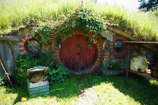 2017 Grass Green Hobbit Day Door Field Flower Garden Grass Green Color Growth House Nature New Zealand Outdoors Plant ニュージーランド ホビット ホビット村