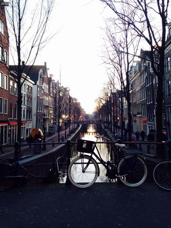 Building Exterior Built Structure Architecture City Transportation Outdoors Mode Of Transport Day Winter The Netherlands IPhoneography Amsterdamcity Amsterdam Canal Gracht Red Light Red Light District Bicycle